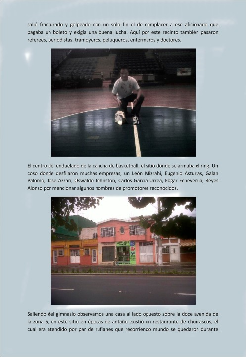 Gimnasio Nacional Teodoro Palacios Flores-12